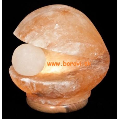 Mušľa s perlou 3-4 kg